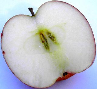 Apple.half